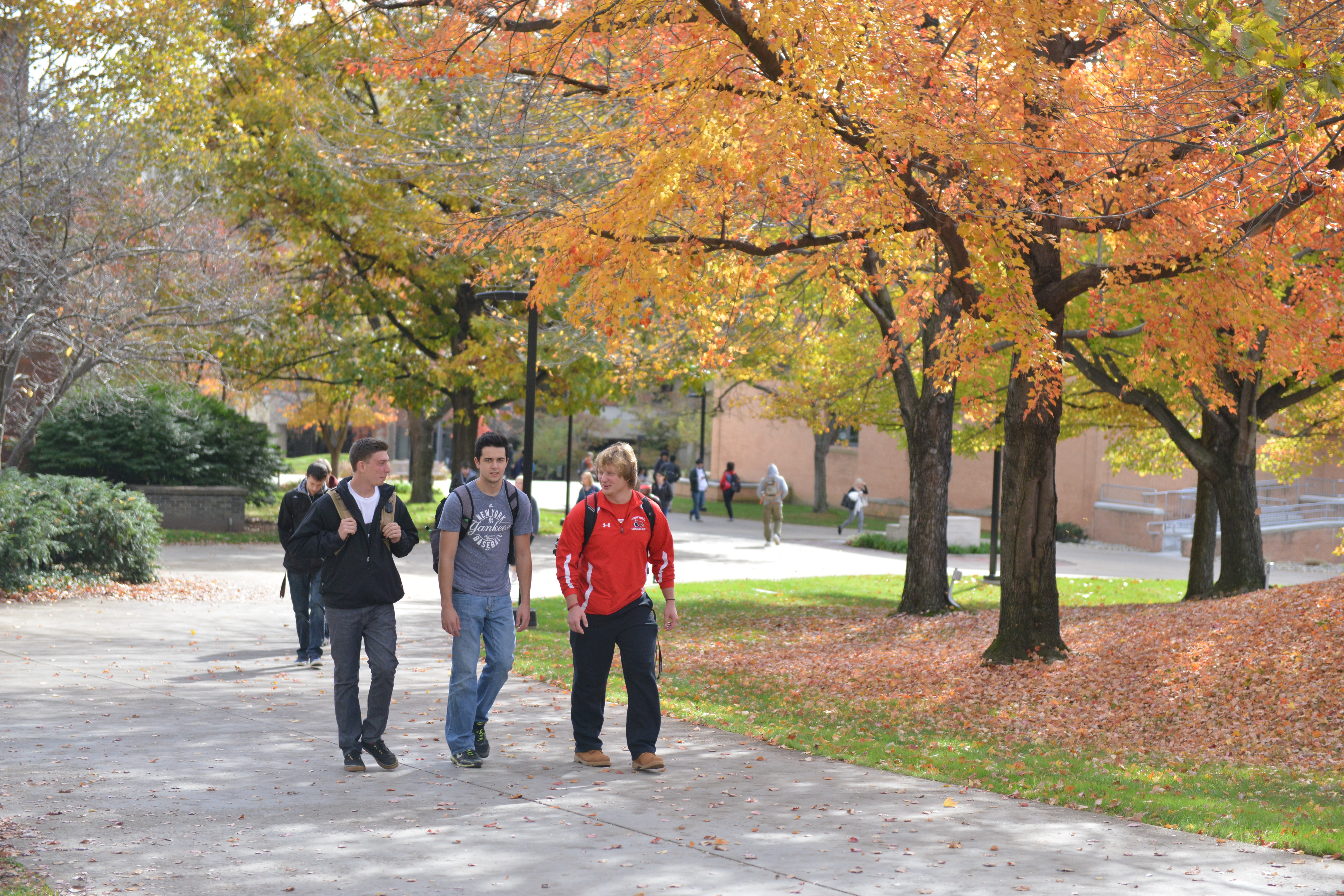 Students Walking in Fall